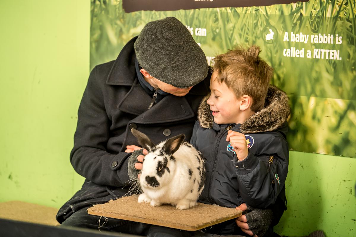 Adam Hensons Cotswold Farm Park Events 1